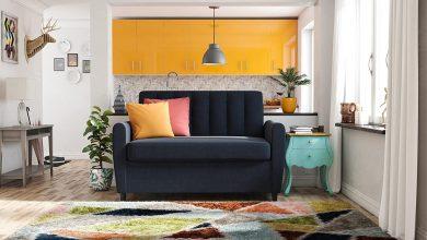 The Best Sleeper Sofa Loveseat